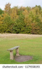 Wooden bench in a park in autumn with trees in the background. Highwoods Park in Colchester, Essex, England, United Kingdom.