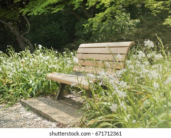 Wooden bench in the park ( Vintage tone color )