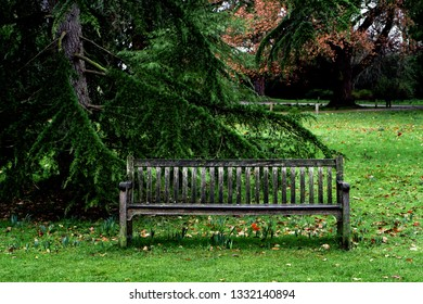 A wooden bench in a public park in the UK
