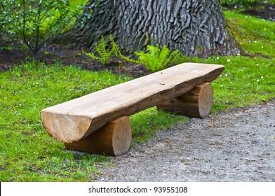 wooden bench under old oak