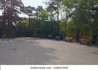 """A wooden benches located in the middle of a public park in Vysehrad (""""Upper Castle""""). Old trees at the background. Summer landscape photo on a sunny morning. Prague, Czech Republic."""