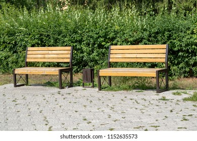 wooden benches in summer park