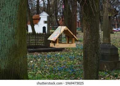 Wooden bird feeder on tree in spring Park or garden