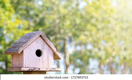 Wooden bird house in garden park with green tree background and copy space.