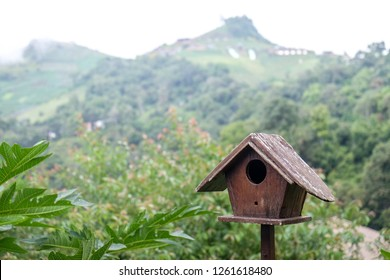 wooden bird house with green mountain background
