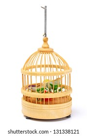 wooden birdcage insulated on white