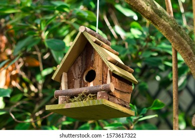 Wooden birdhouse hanging on a tree. Nature help concept