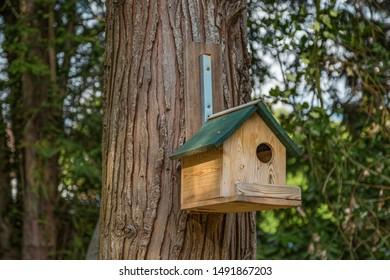 Wooden birdhouse on a tree trunk