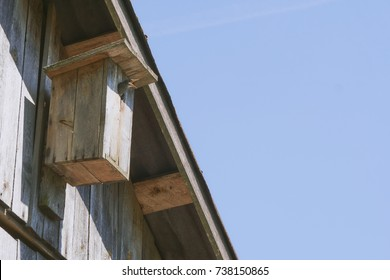 wooden birdhouse on the wall. Nestling of the starling in the starling. The starling feeds the chick. Hungry chick