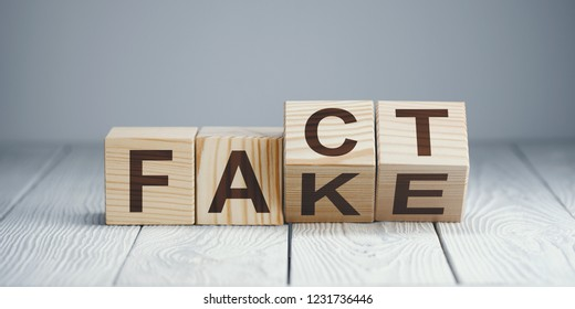 """Wooden blocks with letters forming words """"Fact"""" and """"Fake"""" on neutral background"""