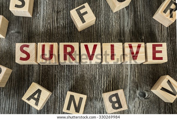 Wooden Blocks with the text: Survive