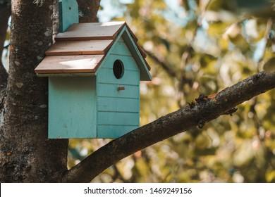 Hölzernes blaues Vogelhaus auf einem Apfelbaum in der Parkzone. Einfaches Vogelhaus-Design. Schutz für die Vogelzucht, Nistkasten auf dem Baum