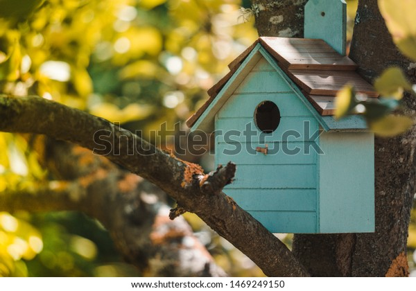 https://image.shutterstock.com/image-photo/wooden-blue-birdhouse-on-apple-600w-1469249150.jpg