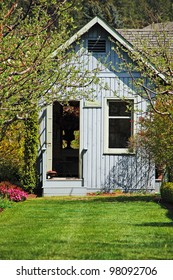 Wooden blue garden shed in the spring
