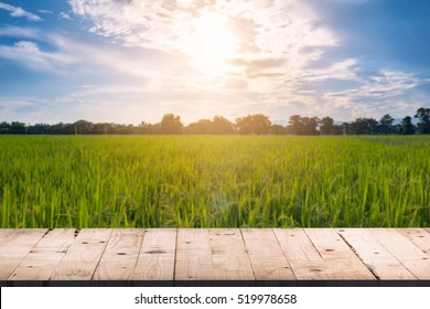 Wooden board table front and blurred background rice field sunlight for product display montages.
