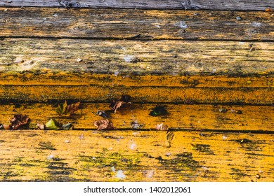 Wooden board wall texture pattern of wood materials and likeness