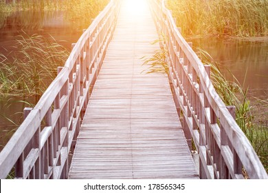Wooden boardwalk creates path through field of tall green on grass on lake leading to sunrise