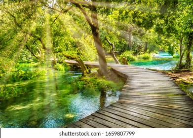 Wooden boardwalk in the green forest of Krka National Park, Croatia. Beautiful walking trail or footpath over the river near Krka waterfalls. Scene with trees and water on a sunny day with sunrays. - Shutterstock ID 1659807799