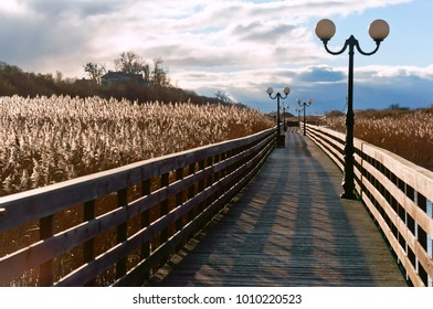 wooden boardwalk through the reeds in the sunlight, a wooden plank promenade with lampposts