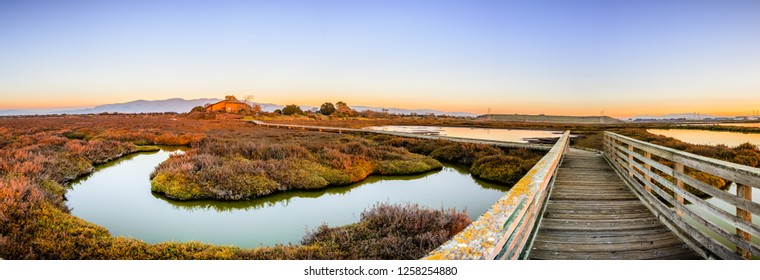 Wooden boardwalk through the tidal marshes of Alviso, Don Edwards San Francisco Bay National Wildlife Refuge, San Jose, California; sunset view