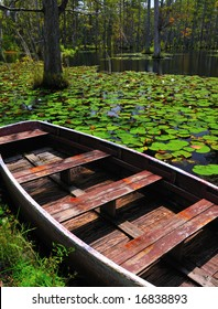 Wooden boat in a cypress swamp