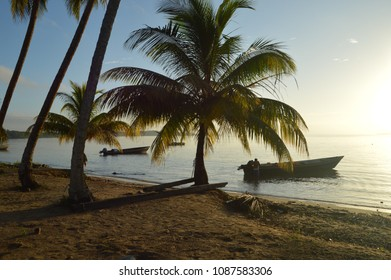 Wooden boat on the beach with palm trees and sunset