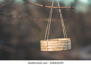 Wooden bowl with birdseeds hanging from a tree, with public park in background