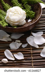 Wooden bowl of camellia blossoms with petal
