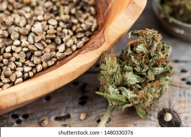 Wooden bowl of cannabis hemp seeds and Cannabis Medical Marijuana Bud with grinder on old wooden background. Hemp Seeds Cannabis Buds Medical Marijuana Background Grinder Wooden Bowl