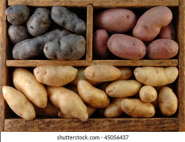 Wooden box filled with different colored fingerling potatoes.