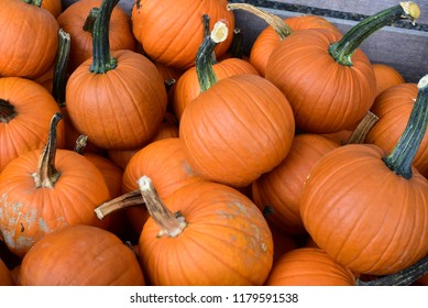 a wooden box full of medium sized orange pumpkins at the market, not arranged.  Halloween and Thanksgiving decorations.