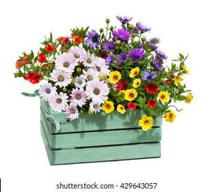 A wooden box with garden flowers with opulent blossoms.