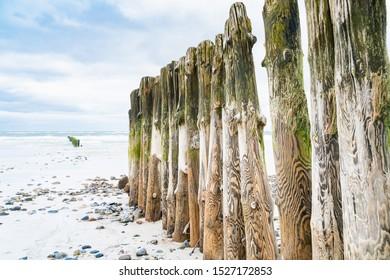 Wooden breakwater on the beach. North Sea. Sylt island.