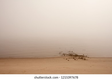 wooden breakwaters with metal wire on the beach on a foggy day