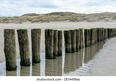 Wooden breakwaters on the beach in Nieuw Haamstede Zeeland Holland