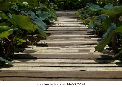 Across At Park Stairs Images Stock Photos Vectors Shutterstock