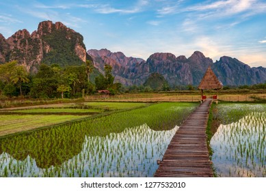 Wooden bridge amidst paddy fields with Karst limestone mountains in the backdrop - Vang Vieng, Laos