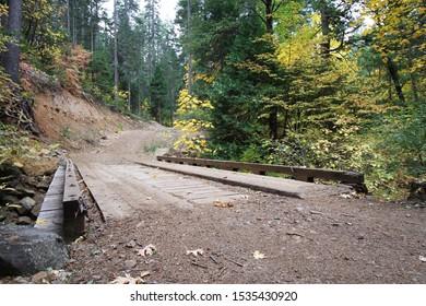 Wooden Bridge in Autumn Forest