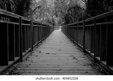 The wooden bridge in black and white