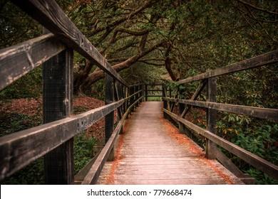 Wooden bridge in the Blarney Garden