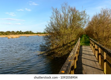 wooden bridge of broadwalk crosses lagoon, shot in bright spring sun light at nature oasis, Cannavie, Volano, Ferrara,  Italy