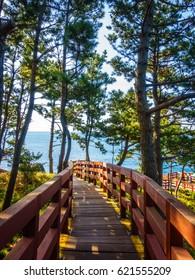 Wooden Bridge to Columnar Joint at Jeju Jungmun Daepo Coast, South Korea.