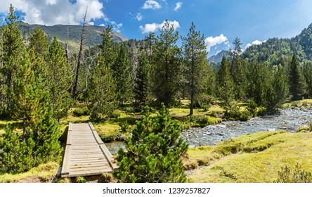 Wooden Bridge Crossing a River in the Catalan Pyrenees