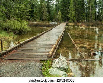 Wooden bridge found in Grand Teton National Park