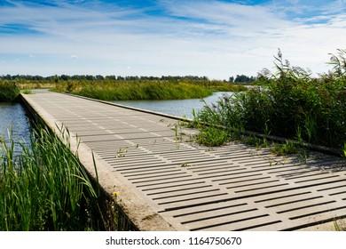 wooden bridge with grass in national park Biesbosch, The Netherlands