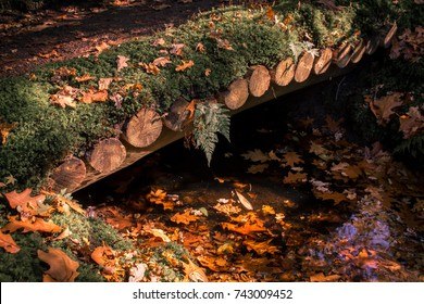 wooden bridge in a Japanese garden  because of the fall there are leaves everywhere covering the green moss and water creating a beautiful patern of autumn colors