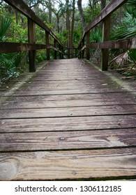 Wooden bridge jungel