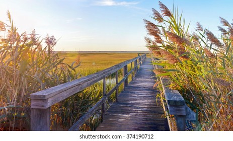 wooden bridge leading into the lake with a beautiful sunset