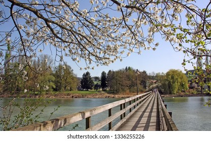 Wooden bridge leading to the isle Werd on the lake of Constance, Switzerland in spring time.