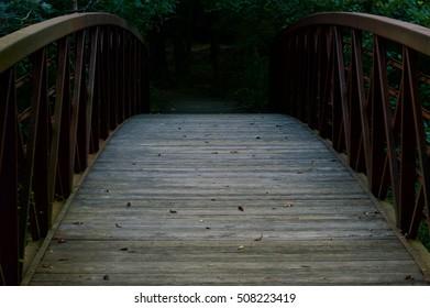 Wooden Bridge in Lush Green Forest